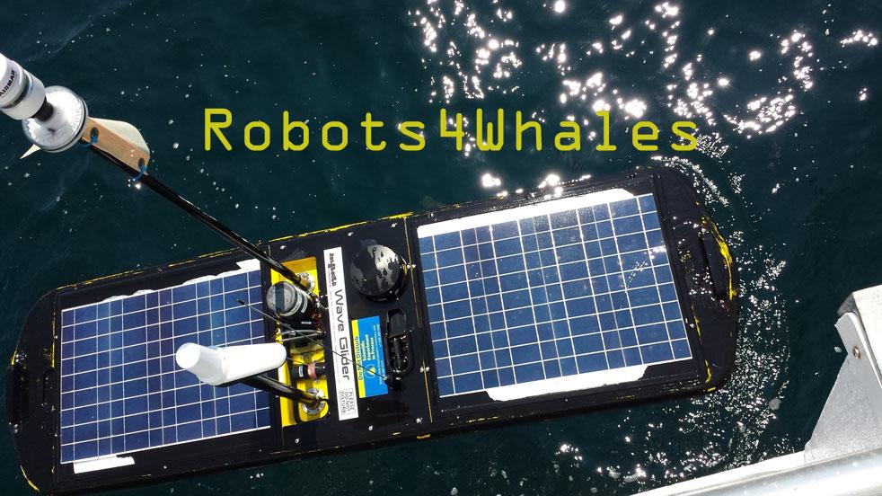 Robots4Whales: Autonomous Real-time Marine Mammal Detections